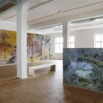 Pageant Roll Thunderclap, installation view, 2012 dOCUMENTA (13)