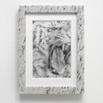 Claque & Shill (white tiger), 2013, Graphite on paper, granite, 28 x 37,5 x 4,5 cm